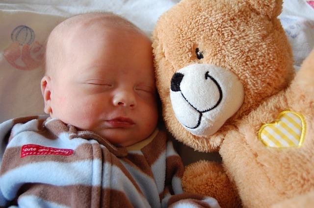 medvěd a kojenec