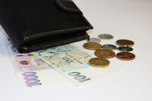 kožená peněženka.jpg