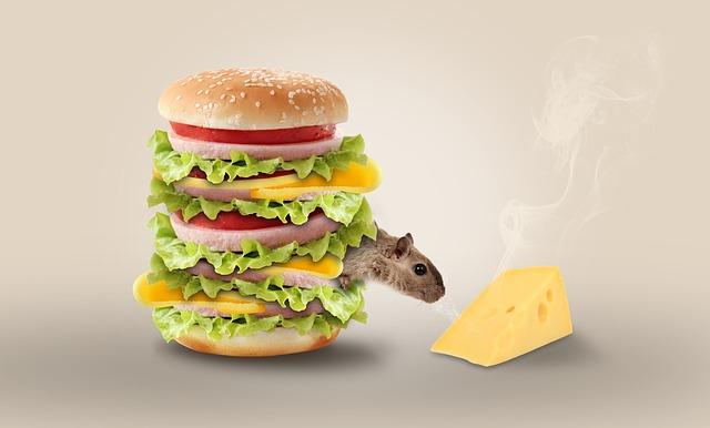 Myš v hamburgeru